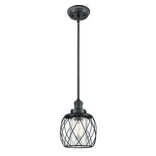 Gracie Oaks Mahoney 1-Light Outdoor Pendant