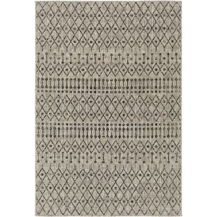Gunter Bohemian Khaki/Charcoal Indoor/Outdoor Area Rug