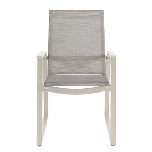 Dani Sling Patio Dining Chair with Cushion (Set of 2)