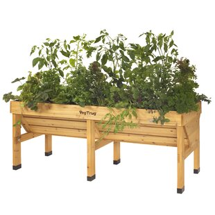 https://secure.img1-fg.wfcdn.com/im/16001876/resize-h310-w310%5Ecompr-r85/6731/67312240/bed-raised-garden.jpg