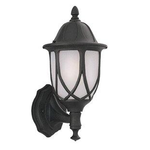 Alcott Hill Newburg 1-Light Outdoor Wall lantern