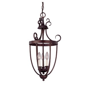 Best Reviews Boland 3-Light Outdoor Pendant By Fleur De Lis Living