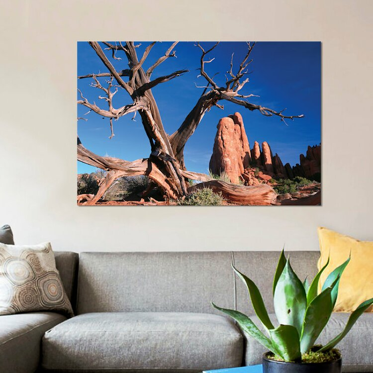 East Urban Home Snag In Front Of Fiery Furnace Labyrinth Arches National Park Utah Photographic Print On Canvas Wayfair Ca