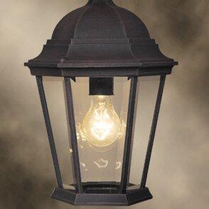 Woodbridge Lighting Basic 1-Light Outdoor Hanging Lantern