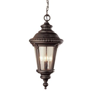Hinckley 1-Light Outdoor Hanging Lantern by Fleur De Lis Living