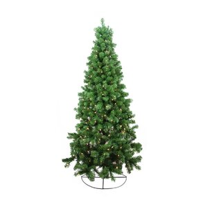 httpssecureimg1 fgwfcdncomim16047466resiz - Wall Christmas Trees