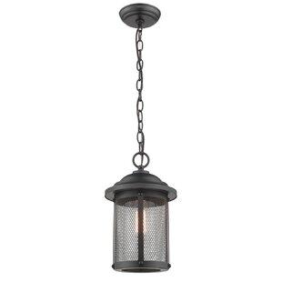 Breakwater Bay Genevieve 1-Light Outdoor Hanging Lantern