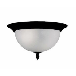 Charlton Home Columbard 2-Light Outdoor Flush Mount