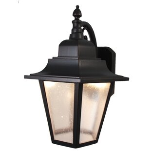 Charlton Home Flannigan 1-Light Outdoor Wall Lantern