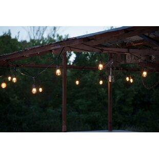 Suspended Commercial Grade 48 ft. 24-Light Standard String Light by Aspen Brands
