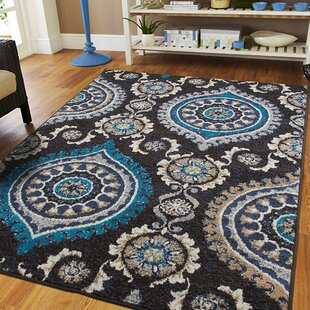 Find Aaronsburg Black Indoor/Outdoor Area Rug Affordable Price