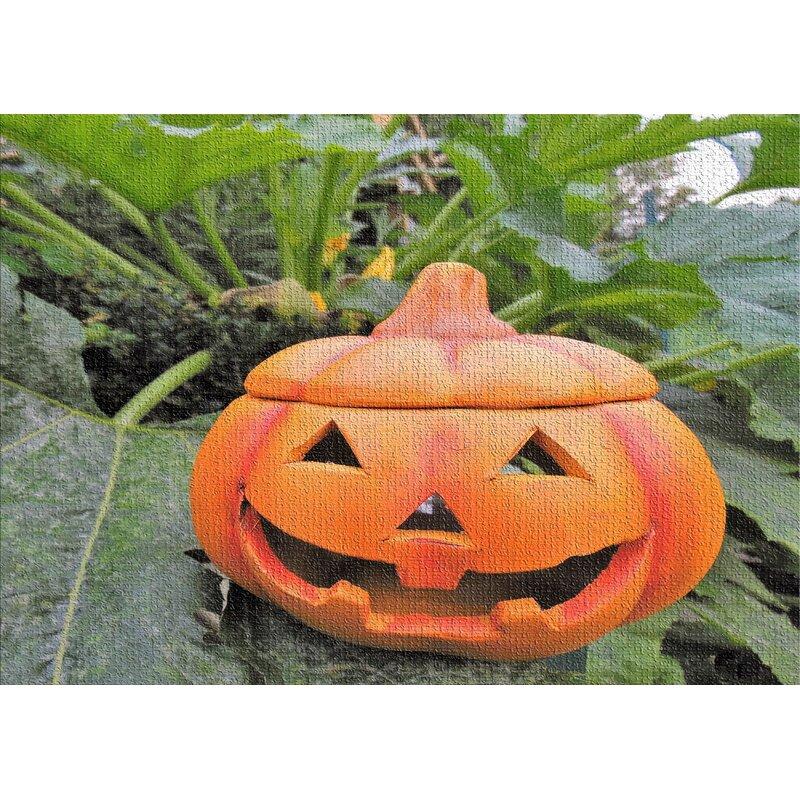 East Urban Home Pumpkin Cotton Orange Area Rug Wayfair