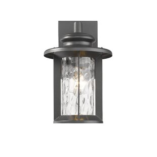 Dunneback Transitional Outdoor Wall Lantern By Breakwater Bay Outdoor Lighting