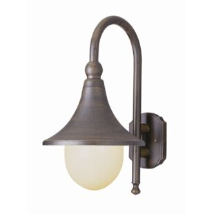 Read Reviews Hardin 1-Light Outdoor Barn Light By George Oliver