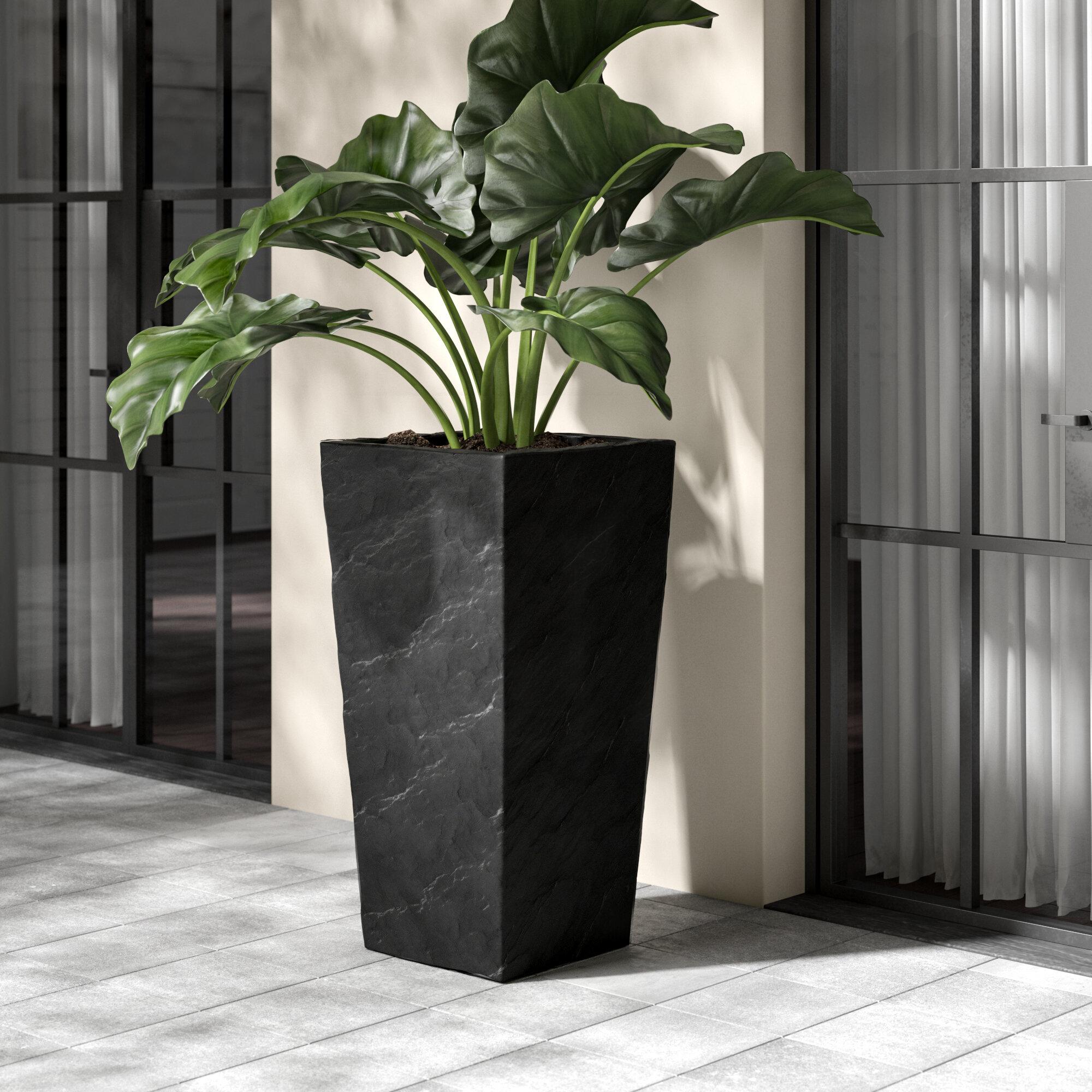 Kasamodern Modern Square Slate Concrete Pot Planter & Reviews | Wayfair