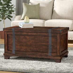 Hebbville Lift Top Coffee Table with Storage