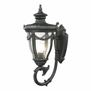 Find Santos 1-Light Outdoor Wall lantern By Astoria Grand