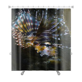 Fish Poisonous Lionfish in the Similan Islands Premium Single Shower Curtain