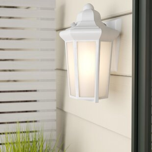 Rosecliff Heights Nordica 1-Light Outdoor Flush Mount