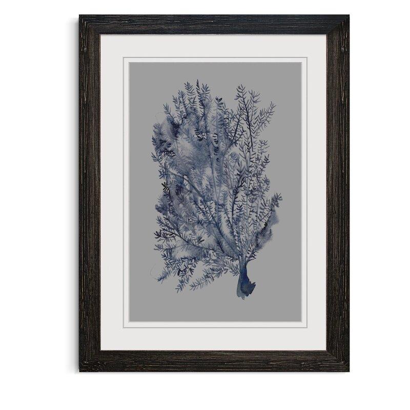 Winston Porter Seaweed Under Water Ii Picture Frame Print On Glass Wayfair