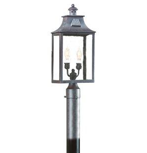 Darby Home Co Theodore Classic 2-Light 60W Lantern Head