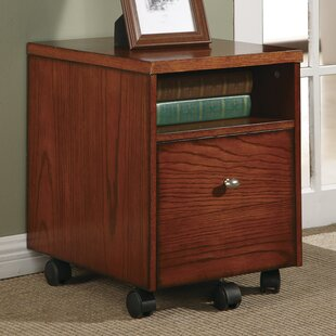 Red Barrel Studio Wild Rose 1 Drawer Mobile File Cabinet