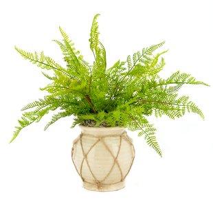 Faux Fern in Twine-Wrapped Vase