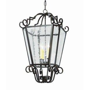 2nd Ave Design Marin 4-Light Outdoor Pendant