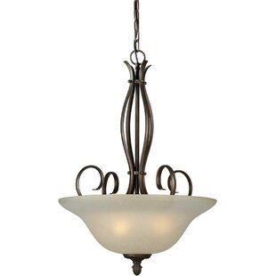 Fleur De Lis Living Blairview 4-Light Bowl Pendant
