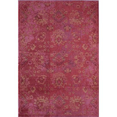 Schaible Fuchsia Area Rug Bungalow Rose Rug Size: Rectangle 4' x 5'7