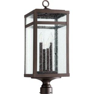 Pedersen 4-Light Lantern Head by Gracie Oaks