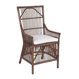 Braun Arm Chair by Mistana