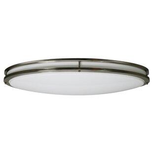Efficient Lighting 2-Light Flush Mount