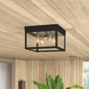 Demery 4-Light Outdoor Flush Mount