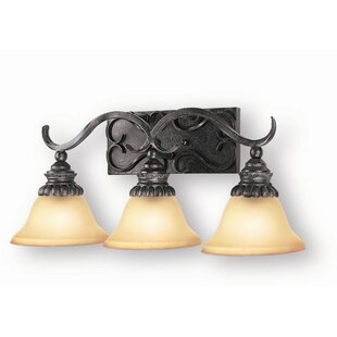 Fleur De Lis Living Willingham 3-Light Vanity Light