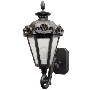 Petrey 1-Light Outdoor Sconce by Alcott H..