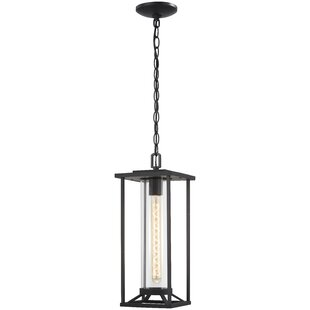 Price comparison Crozier 1-Light Outdoor Hanging Lantern By Williston Forge