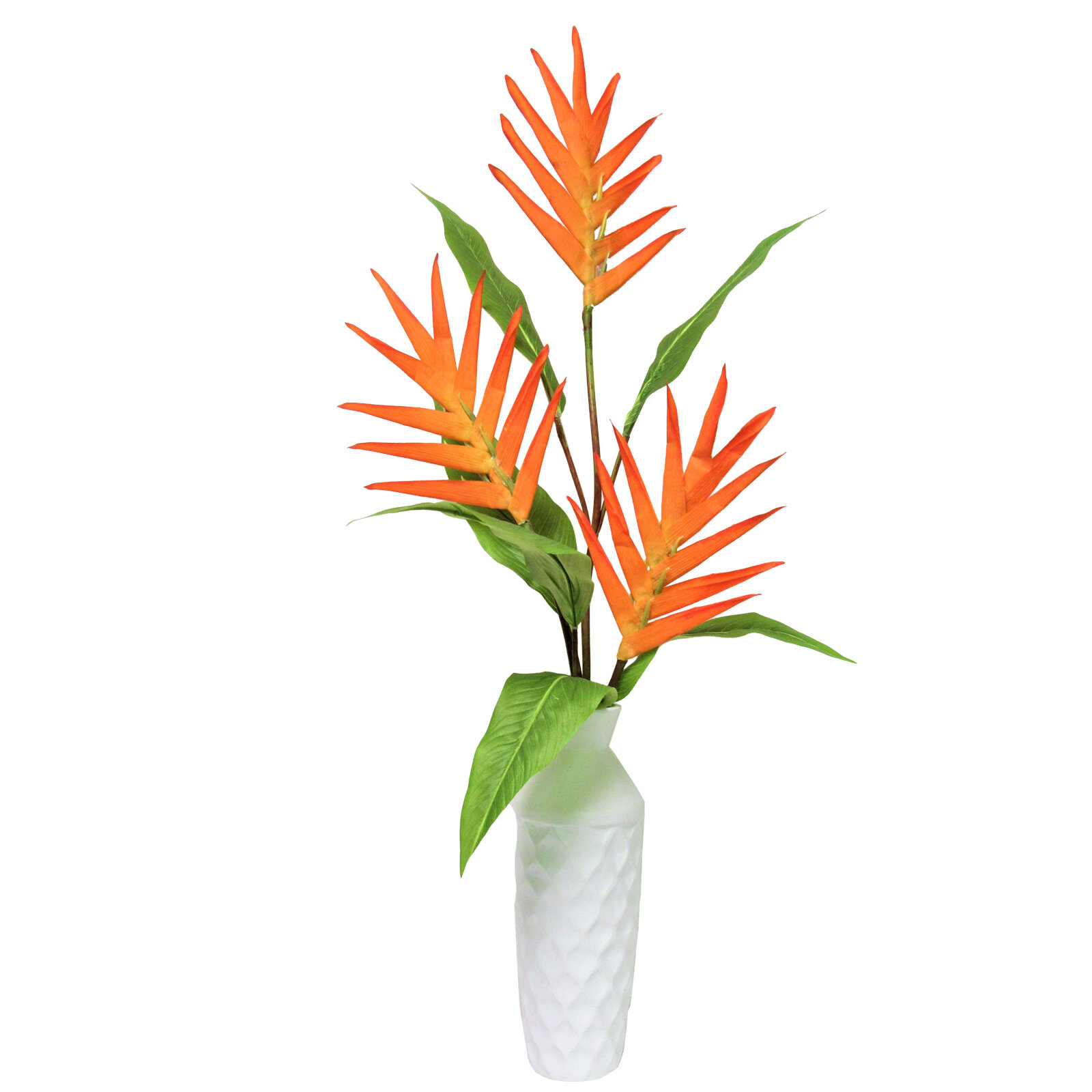 Bay Isle Home Tropical Halyconia Floral Arrangements And