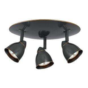 Latitude Run Alberto 3-Light Directional & Spotlight