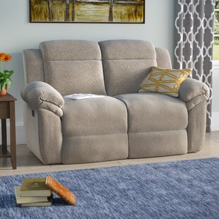 Apollo Manual Motion Reclining Loveseat Red Barrel Studio