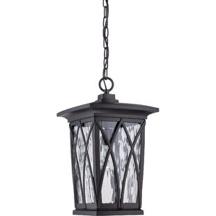 Stoneridge 1-Light Outdoor Hanging Lantern