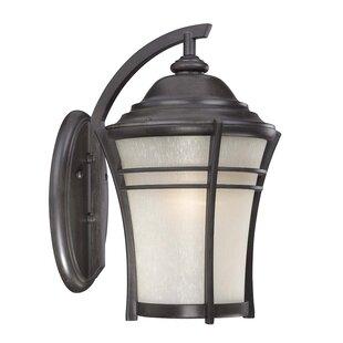 World Menagerie Petersen 1-Light Outdoor Wall Lantern