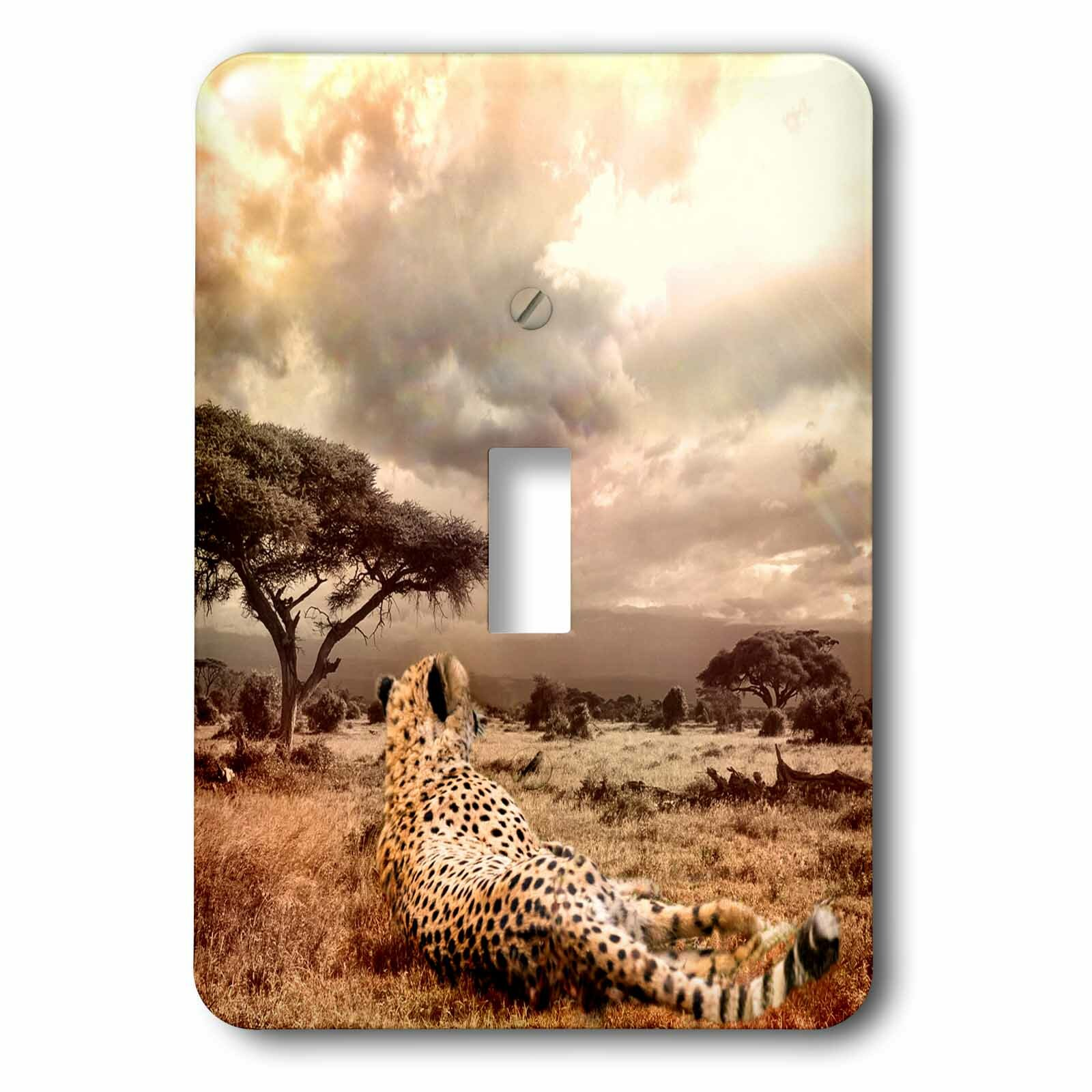 3drose Cheetah African Wildcat 1 Gang Toggle Light Switch Wall Plate Wayfair
