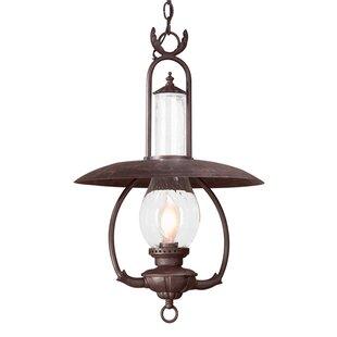 Astoria Grand Welch 1-Light Outdoor Hanging Lantern