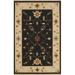 Best Reviews JiJum Black Border Hand Knotted Wool Area Rug By Continental Rug Company