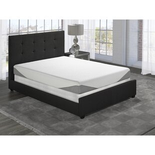 Darby Home Co Roodhouse Upholstered Panel Bed