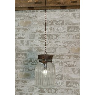 Gracie Oaks Southard 1-Light Hanging Jar ..