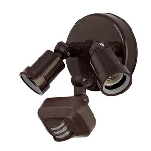 Williston Forge Cosner Outdoor Security w..