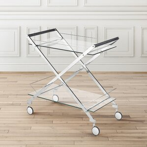 Almanzar Modern Design Steel Glass Bar Cart by Everly Quinn