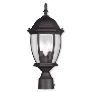 Beth 3-Light Lantern Head by Darby Home Co